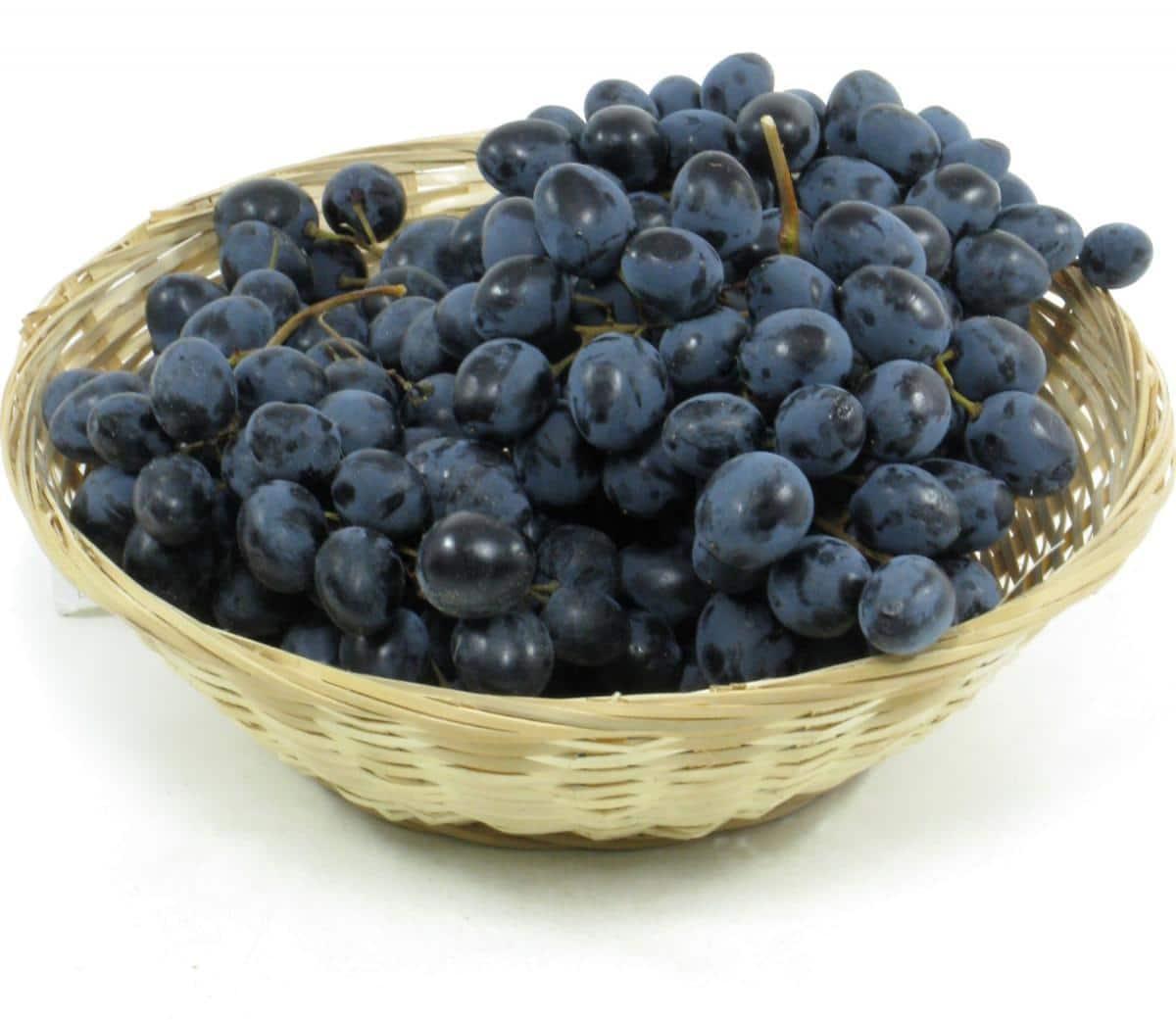 Виноград черный сапфир