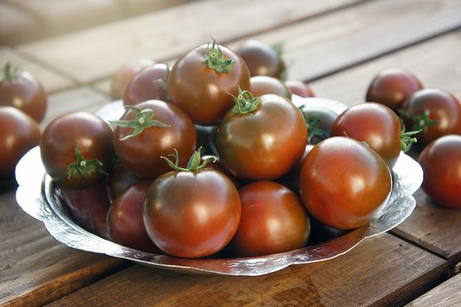 Томат Кума - описание сорта, отзывы, урожайность