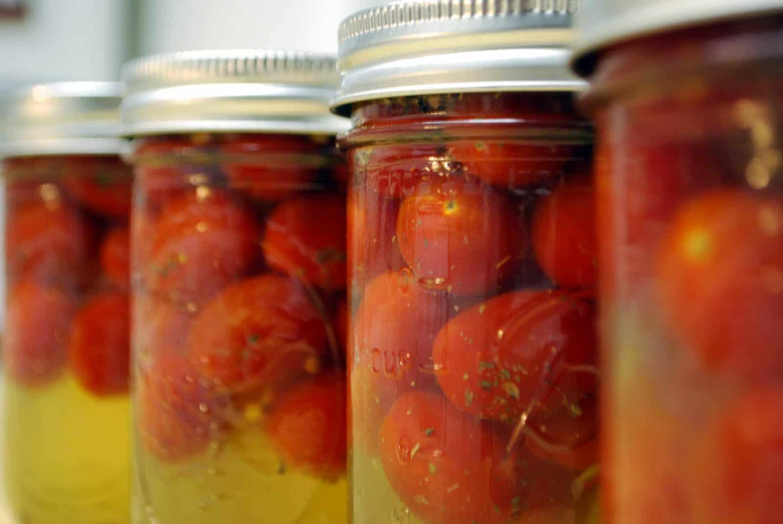 Холодная засолка помидоров на зиму в банках