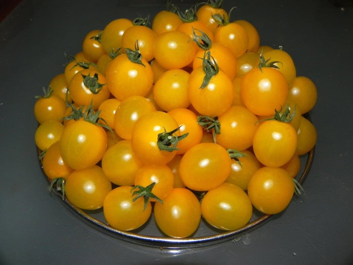 Салат на зиму из желтых помидор