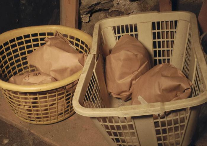 Сорта капусты белокочанной, сорта для зимнего хранения